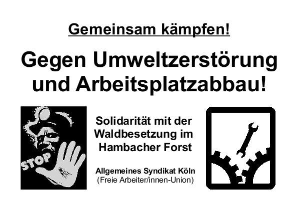Solidarität mit der Waldbesetzung im Hambacher Forst
