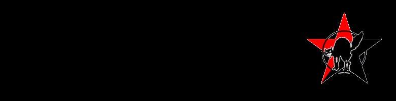 Allgemeines Syndikat Köln